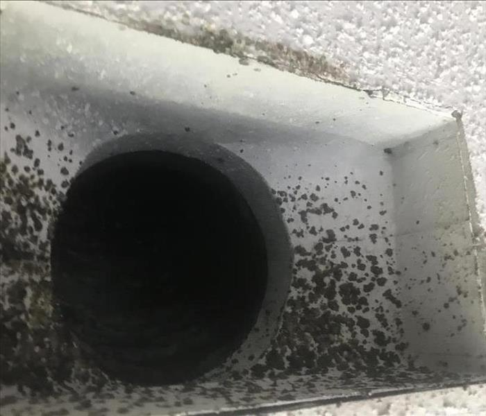 Mold removal in ducting Before
