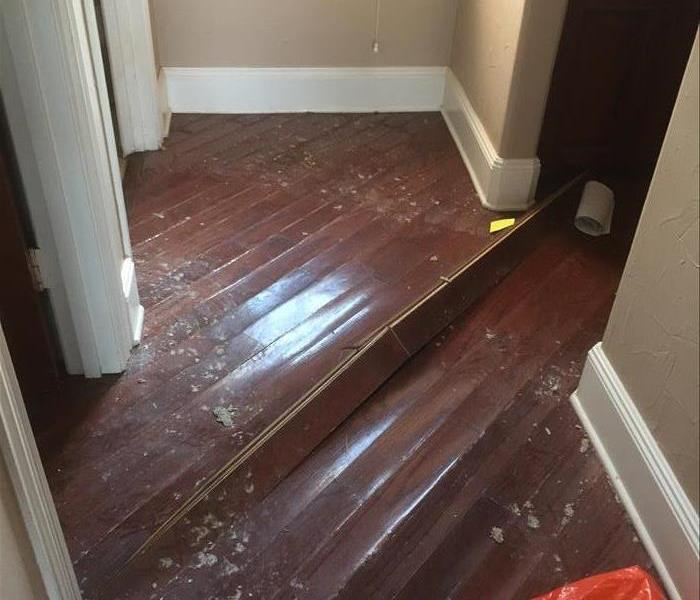 Hard wood floor flooding